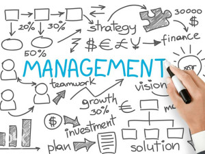 Online kursevi: Management ili Project Management