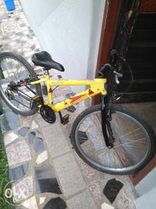 biciklo 24 capriolo