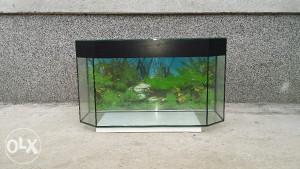 Akvarijum sestougaoni