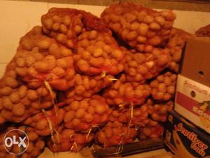 Krompir za ishranu i sadnju