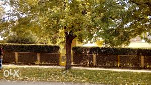 Kuća na prodaju-Bijeljina