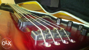 FS SANDBERG - PROFI GERMANY BASS