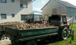 Grmecki krompir