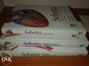Anatomski atlas - Sobotta - AKCIJA