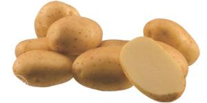 Krompir Agrija zuti