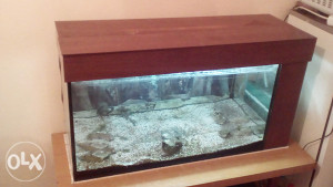 Akvarijum 160 l
