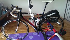 Specialized Allez Comp DSW Cestovno biciko 56cm
