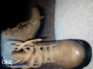 Cipele  eko koza