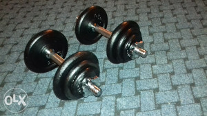 Bučice 2x10kg 062/572-491