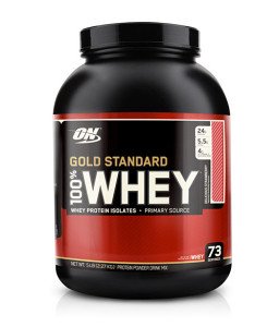 ON GOLD WHEY Chocolate 1lb (450g), PROTEIN