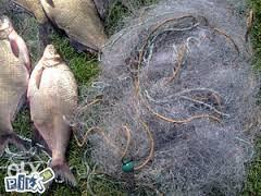 Mreza za ribolov svih vrsta