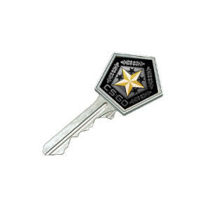 Gamma 2 Case Key ( STEAM CSGO CS GO )