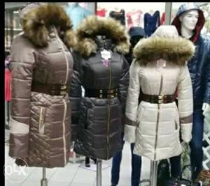 Darmil zenska jakna