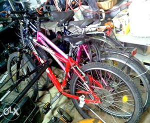 Bicikla njemacka