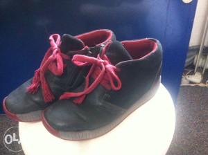Cipele cizmice gleznjace br 35