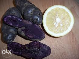plavi krompir