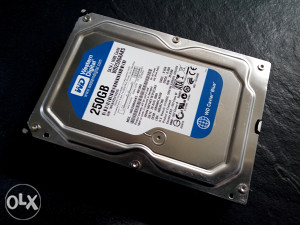 Desktop Hard Disk 250GB Western Digital BLUE