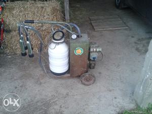 Muzilica za krave Virovitica