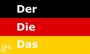 Instrukcije iz njemackog jezika  ( 45 min - 15KM )